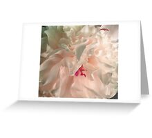 Light Pink Peony Greeting Card