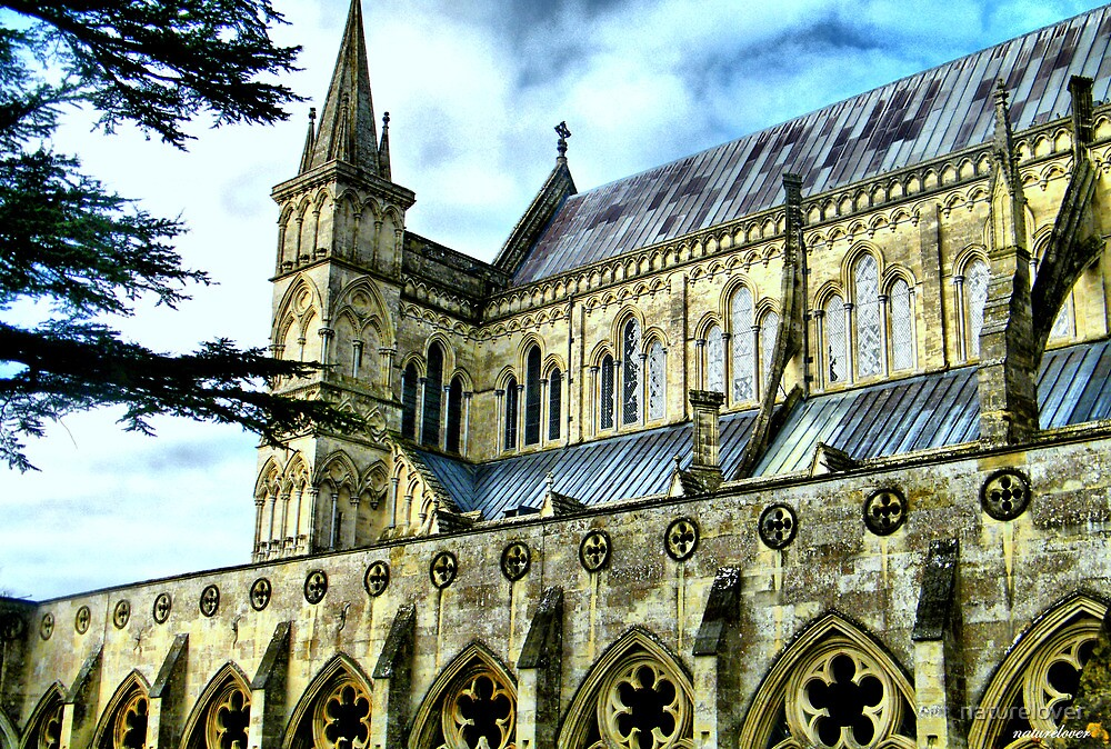 Another Angle...Salisbury Cathedral by naturelover