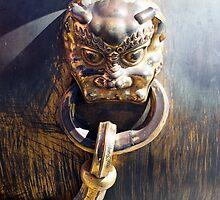 Lions Head Detail, Forbidden City, Beijing, China by hinomaru