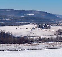 Winter in the Catskills by Dandelion Dilluvio