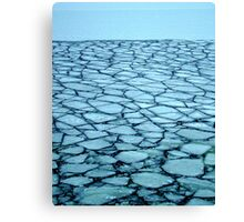 Ice Puzzle Canvas Print