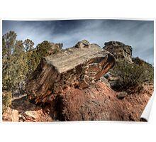 Palo Duro Canyon Trail Poster