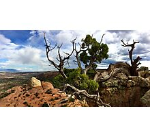 Taking a Rest Above Liberty Cap  Photographic Print