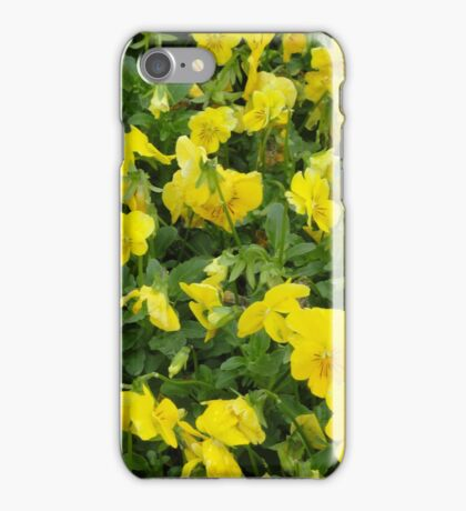 Yellow Pansies Flower Patch iPhone Case/Skin