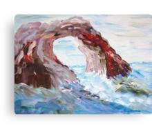 Rock in the Mediteranean  Canvas Print