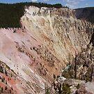 Yellowstone River Cliffs by kayzsqrlz
