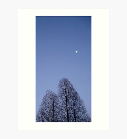 Cypress Trees and the Three Quarter Moon Art Print