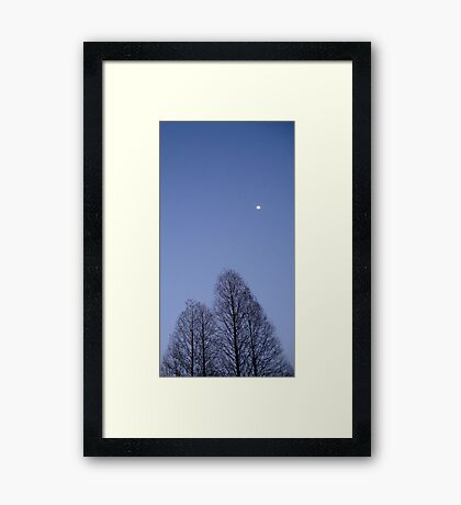 Cypress Trees and the Three Quarter Moon Framed Print