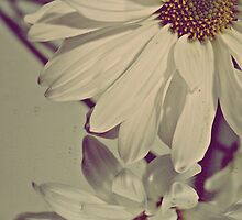 A flower grows everytime it rains. by Andi Jackson