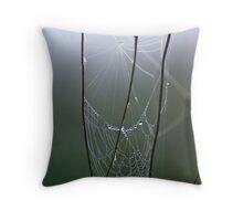 Backlit Web Throw Pillow
