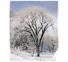 Goodfellows Frosty Cottonwood  Poster