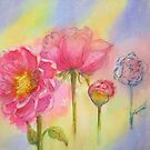 Transitions-Pink Peony by bevmorgan