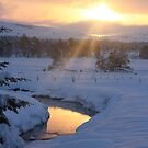 Winter sunset by christopher363