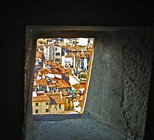 Through the Window of Time by seanh