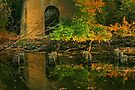 Autumn Reflections Under the Fyansford Bridge by Christine Smith