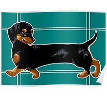 Long dog Poster