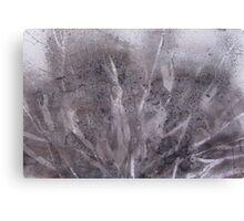 Organic Dissolve Canvas Print