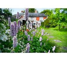 Cottage Garden, Compton, England Photographic Print