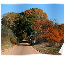 Autumn Country Lane Poster