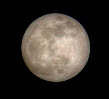 2010's First Full Moon by Gene Walls