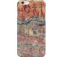 Fossilized Stromatolites iPhone Case/Skin