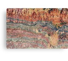 Fossilized Stromatolites Canvas Print