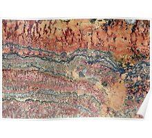 Fossilized Stromatolites Poster