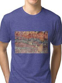 Fossilized Stromatolites Tri-blend T-Shirt