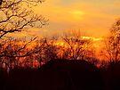 Rural Sunset by Veronica Schultz