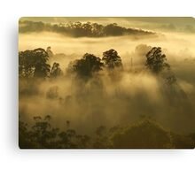"'Morning Secrects"" Canvas Print"