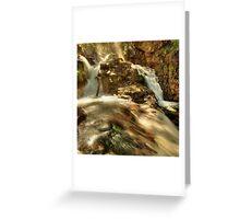 Morning light, Nigothoruk Creek Greeting Card