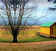 Lake Wendouree by Kerryn Benbow