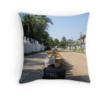 Laos  Temple Bins Throw Pillow