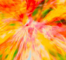 Bromeliad Explosion by njordphoto