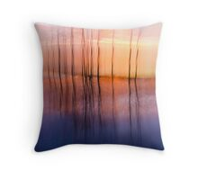 A Wonderful Experience Throw Pillow