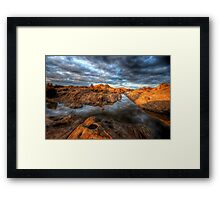Willow on the Rocks 1 Framed Print