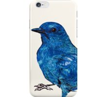Blue Bird iPhone Case/Skin