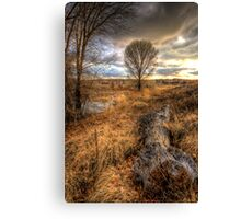 Up and Down Trees Canvas Print