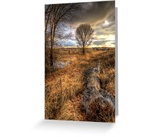 Up and Down Trees Greeting Card