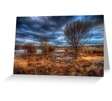 3 Trees Greeting Card