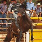 Bronco Rider  Taralga NSW by shippy56