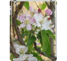 Apple Blossoms iPad Case/Skin