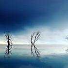 Sky Lake by Kerryn Benbow