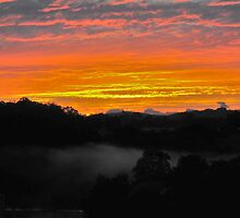 Sunrise - Manning River, Karaak Flat.  by Liz Worth