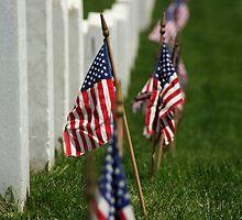 Arlington Cemetery (USA) by BGpix