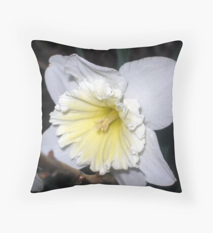 Dressed All in White Throw Pillow