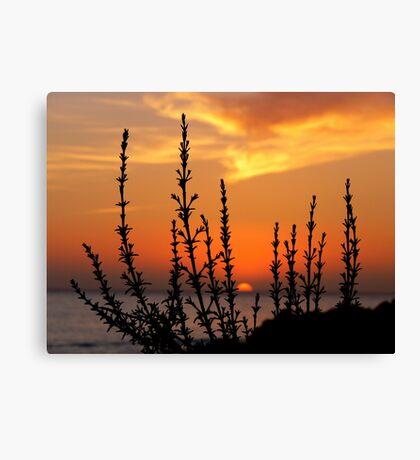 Panoramas Sunset (Morocco) Canvas Print