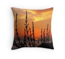 Panoramas Sunset (Morocco) Throw Pillow