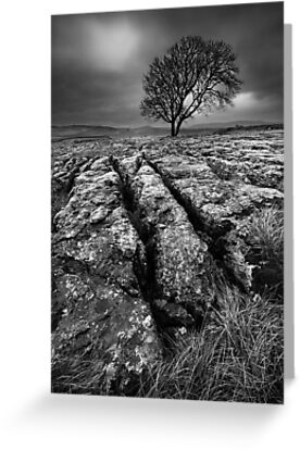Buy e greeting cards uk - Moody Malham, Yorkshire Dales, UK Greeting Cards & Postcards