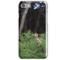 The Fairy Forest iPhone Case/Skin